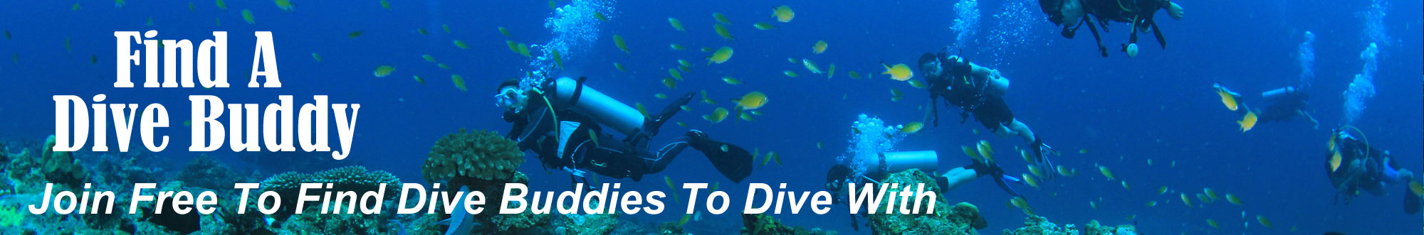 Find A Dive Buddy
